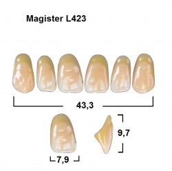 Magister Inc C3 423 ök