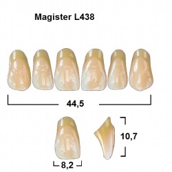 Magister Inc C3 438 ök