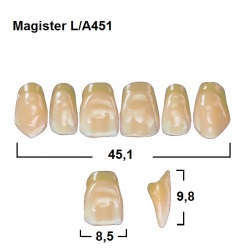 Magister Inc C3 451 ök