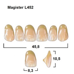 Magister Inc C3 452 ök