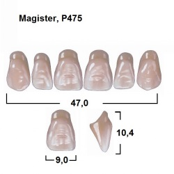 Magister Inc C3 475 ök