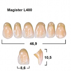 Magister Inc C3 480 ök