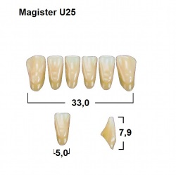 Magister Inc C3 U25 uk