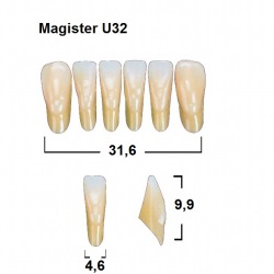 Magister Inc C3 U32 uk