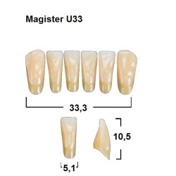 Magister Inc C3 U33 uk