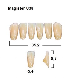 Magister Inc C3 U38 uk