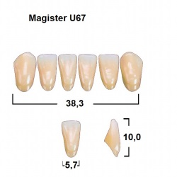Magister Inc C3 U67 uk
