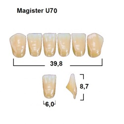 Magister Inc C3 U70 uk