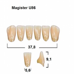 Magister Inc C3 U86 uk