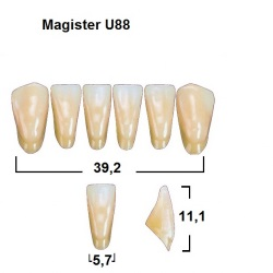 Magister Inc C3 U88 uk