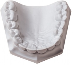 Whipmix Orthodontic stone white, 22kg